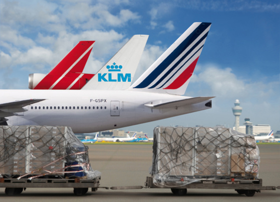 L'activité fret d'Air France-KLM a reculé de 3,6 % © Business Wire