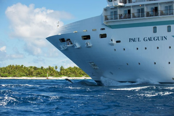 "Paul Gauguin Croisières conserve son paquebot ""Paul Gauguin"" © Paul Gauguin Cruises"